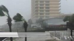 飓风迈克尔减弱为热带风暴