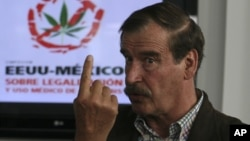 FILE - Mexico's former president Vicente Fox speaks during a news conference held as part of the U.S.-Mexico Symposium on Legalization and Medical Use of Cannabis in San Francisco del Rincon, Mexico, July 18, 2013.