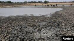 Tanah yang retak saat permukaan air turun di bendungan dekat Gunung Darwin, Zimbabwe, 26 Oktober 2016. (Foto: dok).