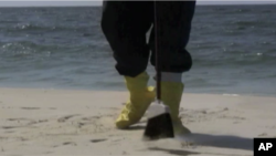 A volunteer sweeps oil from a beach in Florida