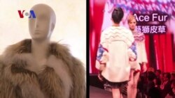 Fashion Designers Optimistic Fur Industry Warming Up