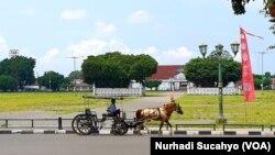 Andong melintas di Alun-Alun Utara Yogyakarta yang relatif lengang, 21 Maret 2020. (Foto: VOA/Nurhadi Sucahyo)