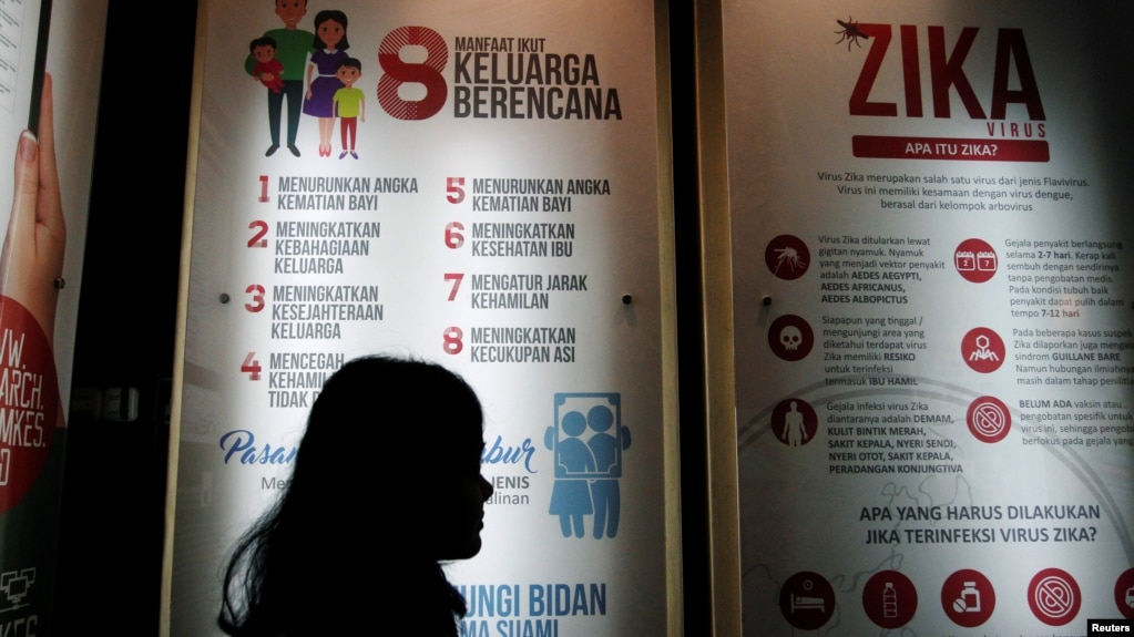 One dose zika vaccine protects laboratory animals file a woman stands near a poster explaining the zika virus at the ministry of malvernweather Images