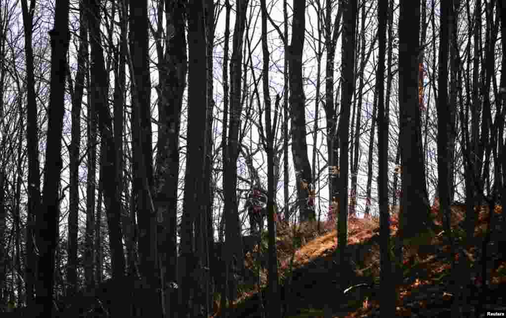 Nyuton, Konnektikut shtati, 14-dekabr, 2012
