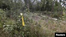 Желтой лентой отмечено место на эстонско-российской границе, где, по заявлению эстонских властей, был похищен Эстон Кохвер