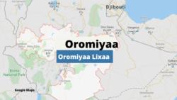 Oromiyaa Lixaa Keessatti Namoonni Eega Hidhamanii Baatiilee Lakkoofsisan Haga Ammaa Mana-murtiitti Hin Dhihaanne, Jedhu Maatiin