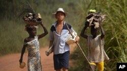 코티드부아르의 코코아 생산지 어린이들