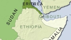 گزارش سازمان ملل متحد: دولت اريتره نقشه حمله به اجلاس اتحاديه آفريقا داشت