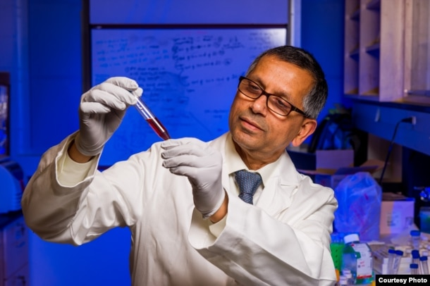 Kattesh Katti, PhD, University of Missouri, prepares nanoparticles to fight liver cancer. (Credit Justin Kelley, U. of MO)