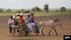 Cư dân di chuyển bằng xe do lừa kéo tại làng Koutoukale ở Niamey, Niger. Các lãnh đạo cấp cao của ông Gadhafi tiếp tục băng qua biên giới sa mạc vào Niger, nơi ông Gadhafi có các liên hệ với dân du mục Tuareg