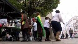 Zimbabweans in the UK Celebrate Military Involvement, End of Mugabe