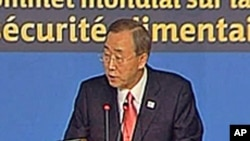 联合国秘书长潘基文