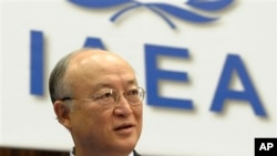 Direktur Badan Energi Atom Internasional (IAEA) saat berada di Vienna, 7 Juni 2010 (Foto: dok).
