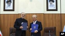 Perunding nuklir Iran Ali Akbar Salehi (kiri) dan Direktur IAEA Yukiya Amano di Teheran menyepakati sebuah peta jalan bagi inspeksi PBB lebih luas atas fasilitas nuklir Iran (11/11).