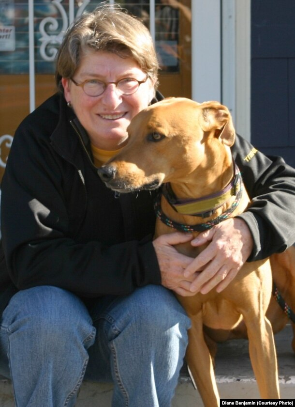 Diane Benjamin treated her Rhodesian ridgeback-greyhound mix with a CBD hemp oil.