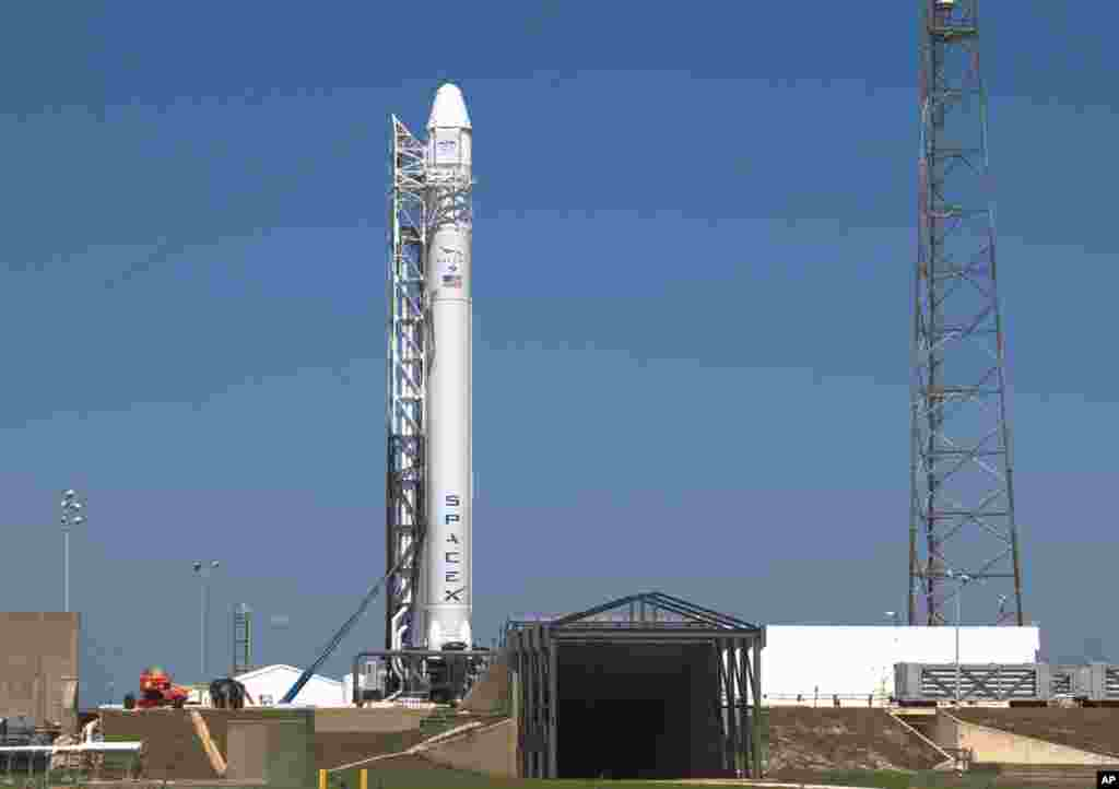 The SpaceX Falcon 9 test rocket being prepared for launch, May 18, 2012. (Reuters)