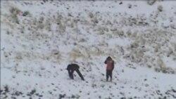 秘魯大雪總統頒佈緊急狀態令