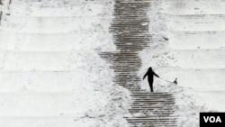 Seorang warga membawa anjingnya di sebuah taman di Bucharest, Rumania (2/2). Cuaca sangat dingin di Eropa tengah dan timur mengakibatkan lebih dari 220 orang tewas.