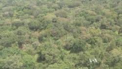 AU Taskforce Chiefs Say Diminished Resources Undermine Kony Hunt