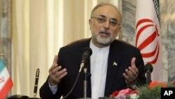 Bộ trưởng Ngoại giao Iran Ali Akbar Salehi.