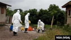 Des travailleurs de la santé luttant contre le virus à Ebola en Afrique de l'Ouest