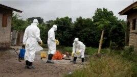 OKB, thirrje për një përgjigje globale ndaj Ebolës
