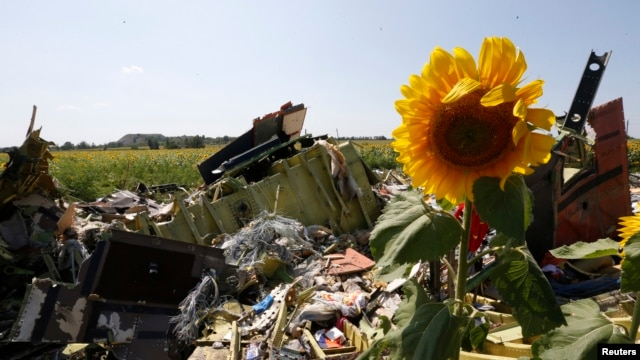 Wreckage from Malaysia Airline MH17 near the Ukrainian village of Hrabovo, July 26, 2014. Nearly 300 people, 193 of them Dutch citizens, were killed when the plane was brought down in eastern Ukraine, where separatists are battling government forces.