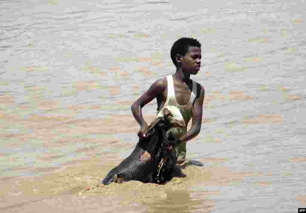 A young Sudanese boy holds a goat out of flood waters are he makes his way to higher land in Khartoum, Sudan.