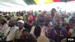 FILE: Members of ruling Zanu PF party enjoying their leader President Robert Mugabe attacking factions angling to succeed him as Zimbabwe's leader, Masvingo, Zimbabwe, Dec. 16, 2016. (S.Mhofu/VOA)