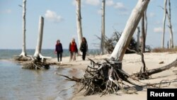 FILE - Women walk through a coastal ghost forest believed to be caused by sea level rise on Assateague Island in Virginia, Oct. 25, 2013.