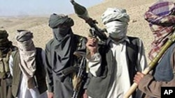 آرشیف: طالبان