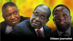 President Robert Mugabe with his two deputies, Phelekezela Mphoko (L) and Emmerson Mnangagwa (R). Collage by Ntungamili Nkomo