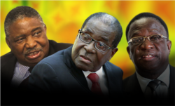 Report on Mugabe Succession Filed By Irwin Chifera