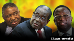 President Robert Mugabe with his two deputies, Phelekezela Mphoko (L) and Emmerson Mnangagwa (R). Collage by Ntungamili Nkomo.