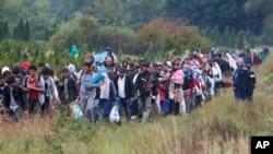 Migranti na granici Hrvatske i Mađarske