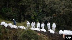 Rescue teams recover the bodies of victims of the LAMIA airlines charter that crashed in the mountains of Cerro Gordo, municipality of La Union, Colombia, Nov. 29, 2016, carrying members of the Brazilian football team Chapecoense Real.