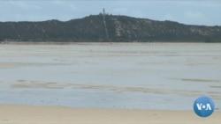 Moçambique: Ciclone Guambe na razão da morte de centena de golfinhos