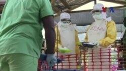 Việt Nam phát hiện 2 người nghi nhiễm Ebola