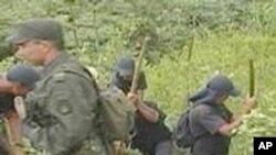 Aiding Guatemala In Combatting Gangs