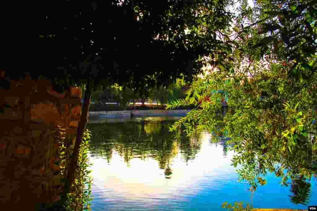 پارک آزادی شیراز عکس: متین نیک آرا (ارسالی از شما)