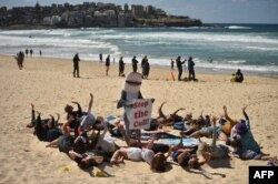 Para peselancar, perenang, penyelam, dan pencinta hiu, serta komunitas berkumpul di Pantai Bondi, membentuk kura-kura raksasa memprotes kerusakan habitat laut akibat jaring hiu di Sydney, 17 September 2017.