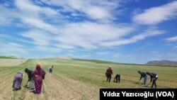 شام سے ترکی آنے والے مہاجرین (فائل فوٹو)