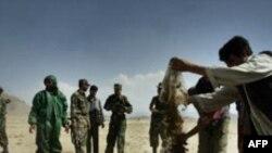 İranın Qərbi Azərbaycan vilayətində narkotik qaçaqmalçıları şəbəkəsi aşkarlanıb