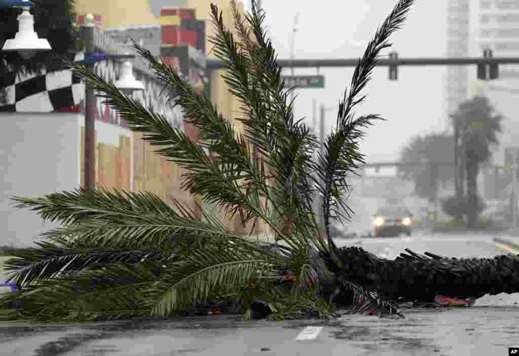Florida shtati dovul ostida