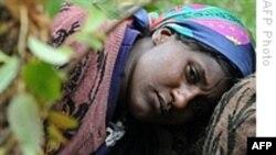 گزارش سازمان ملل: خشونت علیه زنان مهمترین شکل نقض حقوق بشر در جهان است