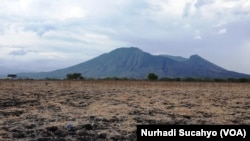 Savana kering dan gunung di TN Baluran, Situbondo, Jawa Timur. (Foto: VOA/Nurhadi Sucahyo)