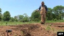Аллана Бэллиета заботит прогноз погоды и другие факторы, влияющие на урожай