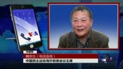 VOA连线:魏京生:国际刑警组织新任主席是威胁