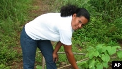 With USAID support, small farmers in the Panama Canal Watershed have improved the way they farm.