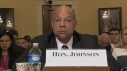 Johnson defiende decreto inmigratorio
